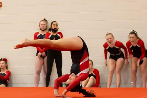 WBH GYMNASTS ARE HEADED TO STATE